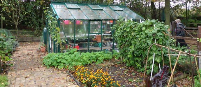 Greenhouse690x300